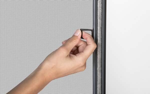 Insektenschutz Schutz Trotz Offener Fenster Internorm At